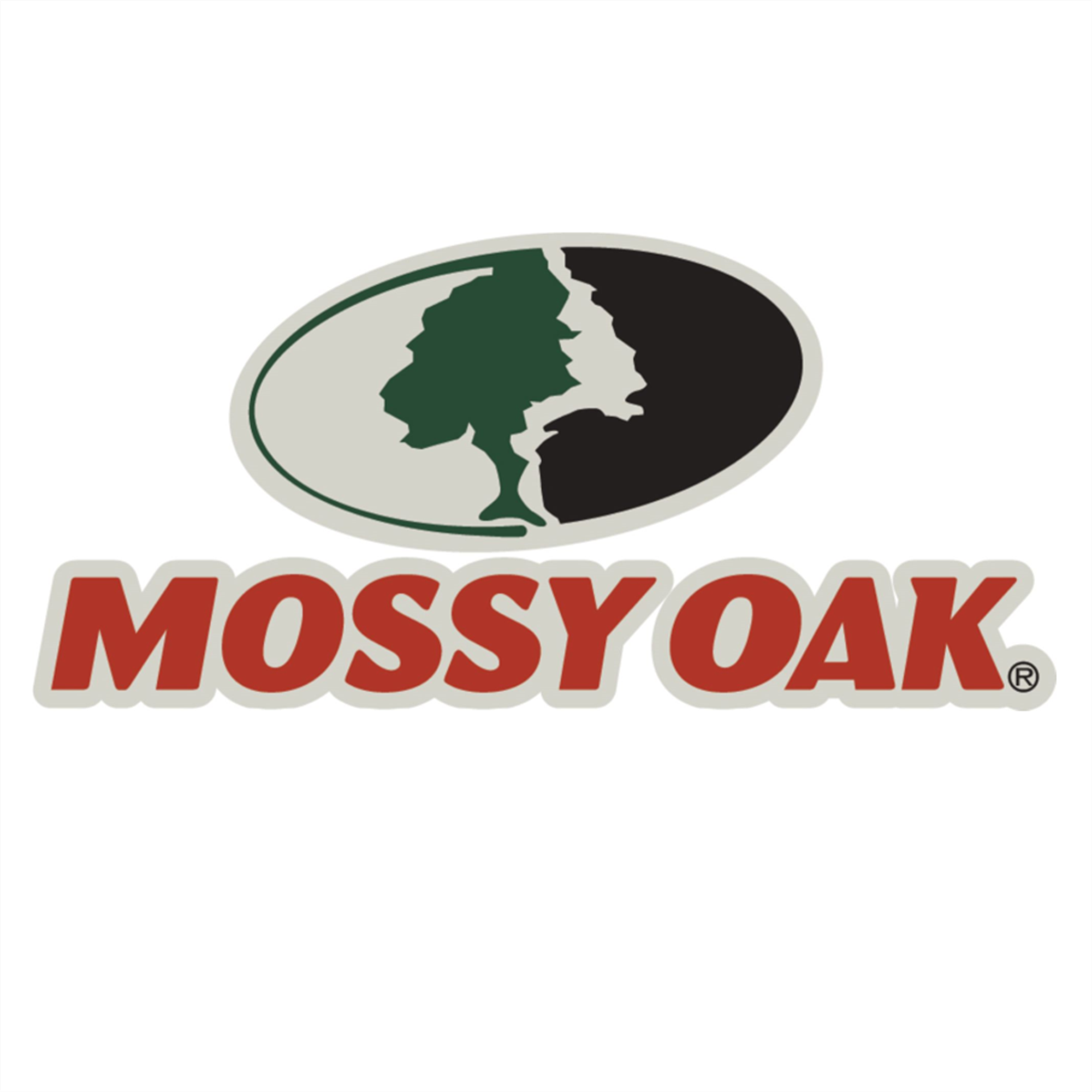 2 Pallets of Boys' Mossy Oak Long- & Short-Sleeve Mountain Country Camo T-Shirts, 1 Est. Ext. Retail $15,306, Charleston, SC